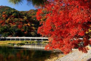 s_arashiyama