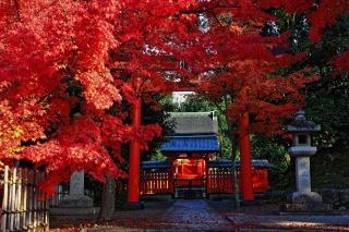 s_arashiyama2